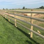 Treated Split Ranch Rail